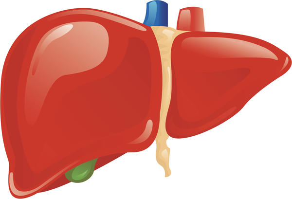 Elevated Liver Enzymes